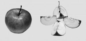 """Раньше с каждого """"яблока"""" Сахалинской области доставались три четвертушки, теперь решили, что хватит двух."""