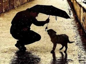 Если ты за добро благодарности ждешь - ты не даришь добро, ты его продаешь.